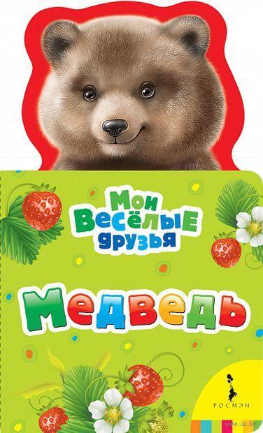 Медведь — фото, картинка