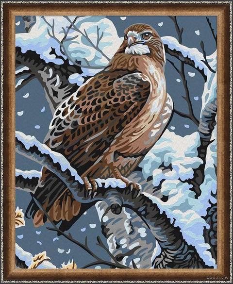 """Картина по номерам """"Гордая птица"""" (400х500 мм) — фото, картинка"""