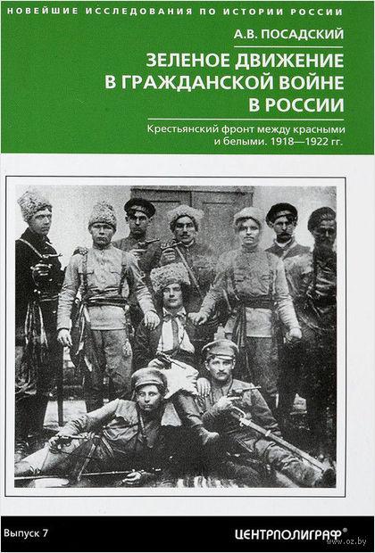 Зеленое движение в гражданской войне России — фото, картинка