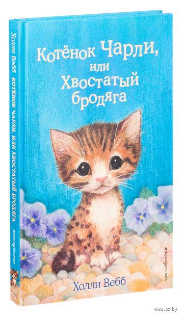 Котёнок Чарли, или Хвостатый бродяга — фото, картинка