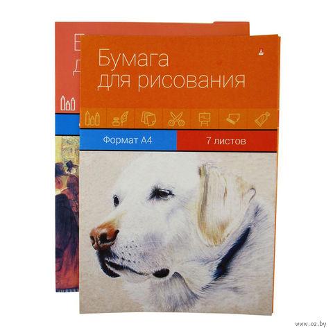 Папка для рисования (А4; 7 листов; в ассортименте) — фото, картинка
