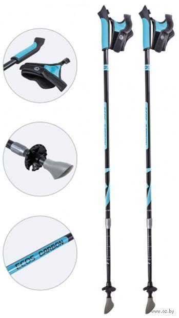 Палки для скандинавской ходьбы двухсекционные AQD-B018C (85-135 см; лазурные) — фото, картинка