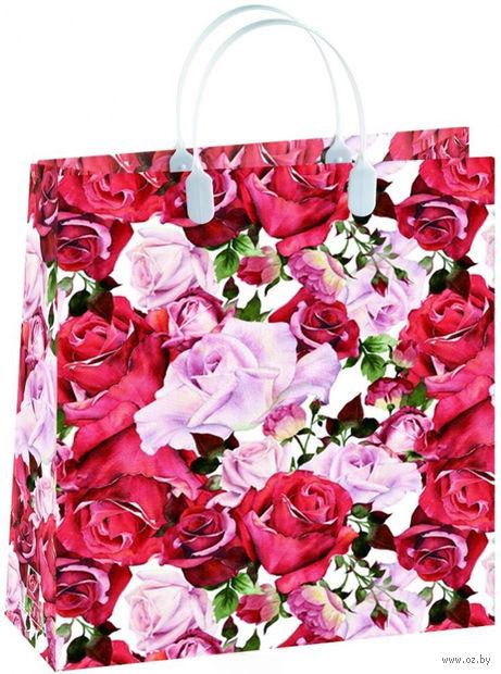 Пакет пластиковый подарочный (23x26 см; арт. BAS 99)