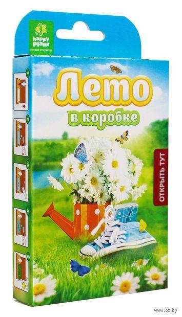 """Набор для выращивания растений """"Лето в коробке"""" — фото, картинка"""