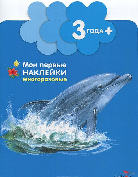 Дельфинчик. Андрэ Боос