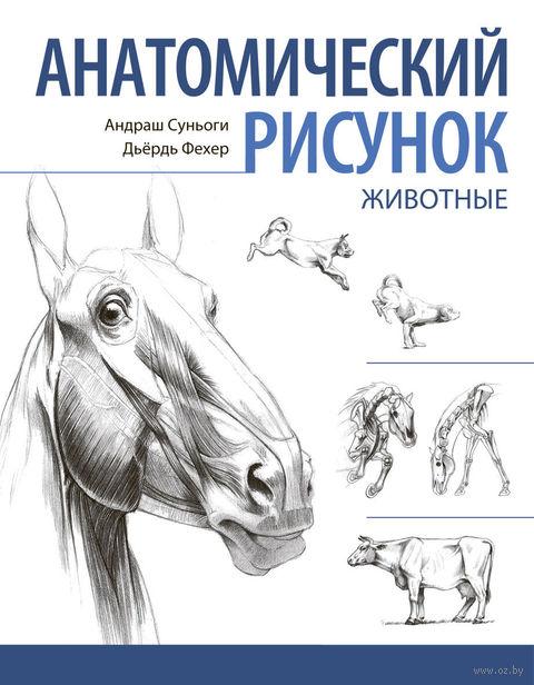Анатомический рисунок. Животные. Андраш Суньоги