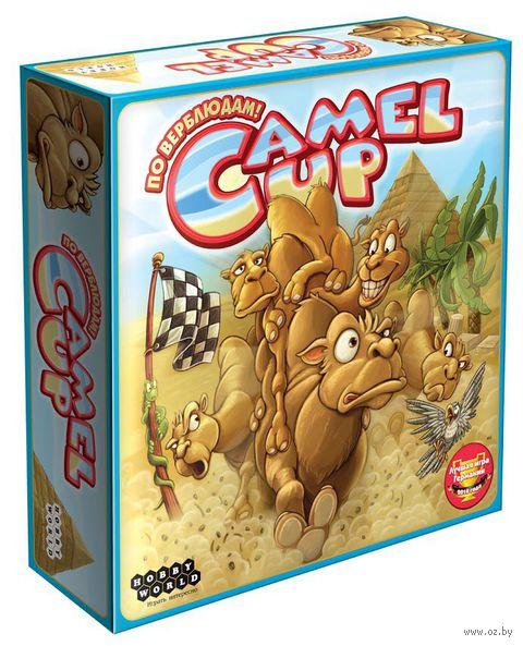Camel Up. По верблюдам!