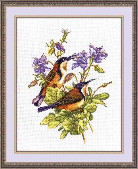 "Вышивка крестом ""Птички-невелички. Колибри"" (190х240 мм) — фото, картинка"