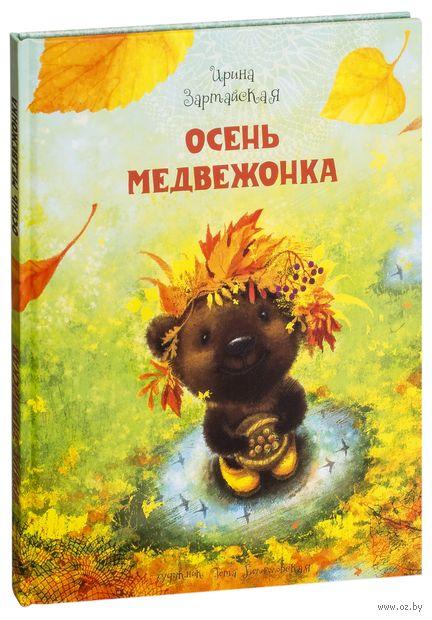 Осень медвежонка — фото, картинка