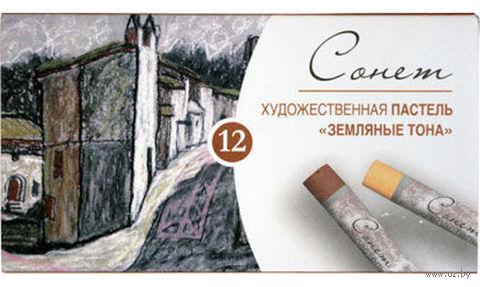"""Пастель художественная """"Земляные тона"""" (12 цветов)"""