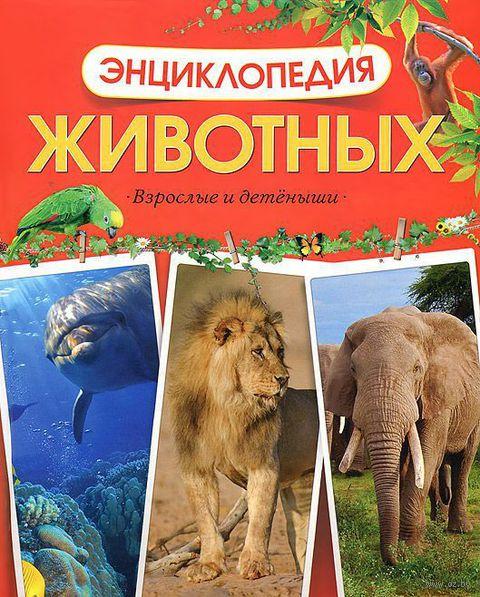 Энциклопедия животных. Взрослые и детеныши. Юрий Амченков