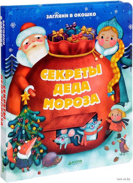 Секреты Деда Мороза — фото, картинка