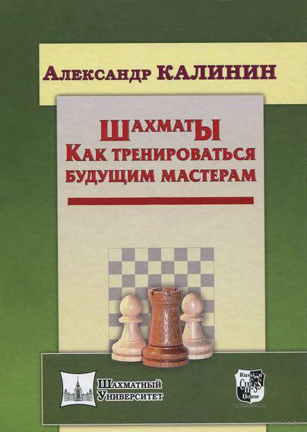 Шахматы. Как тренироваться будущим мастерам — фото, картинка