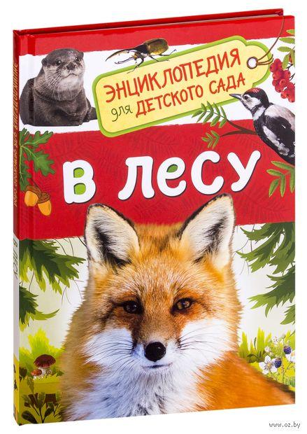 В лесу. Энциклопедия для детского сада — фото, картинка