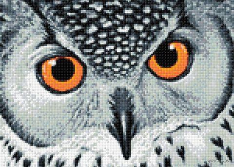 """Алмазная вышивка-мозаика """"Взгляд совы"""" (380х270 мм) — фото, картинка"""