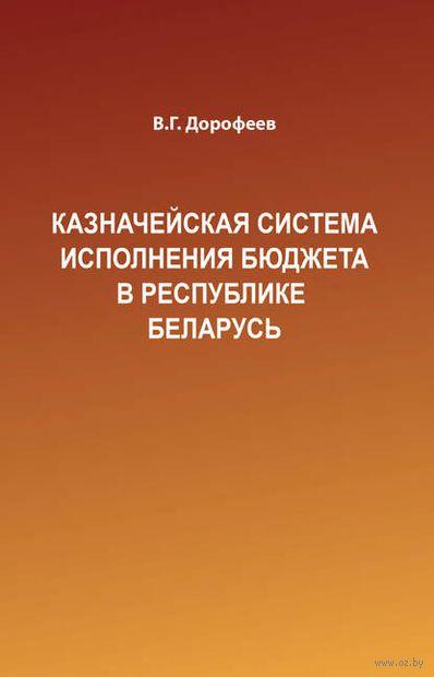Казначейская система исполнения бюджета в Республике Беларусь — фото, картинка