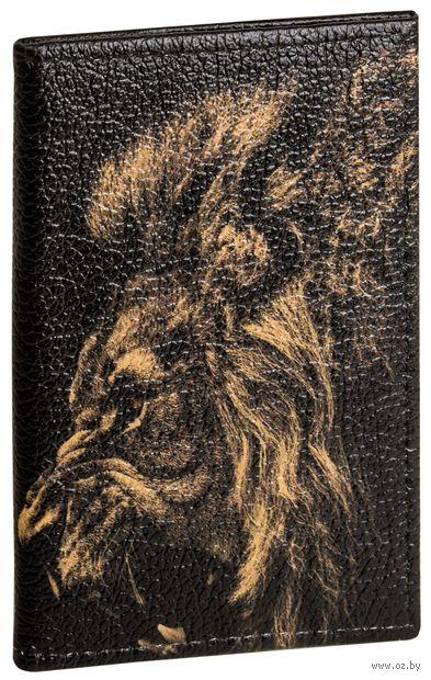 """Обложка на паспорт """"Грозный лев"""" — фото, картинка"""