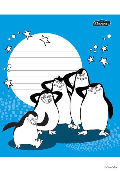 """Тетрадь в клетку """"Пингвины"""" 24 листа"""