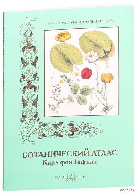 Ботанический атлас — фото, картинка