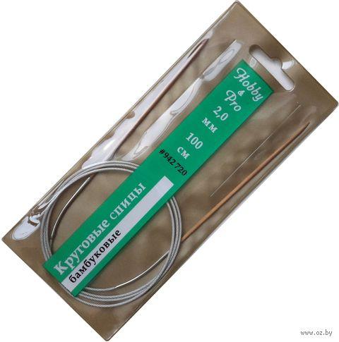 Спицы круговые для вязания (бамбук; 2 мм; 100 см) — фото, картинка
