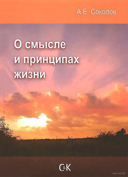 О смысле и принципах жизни. Алексей Соколов
