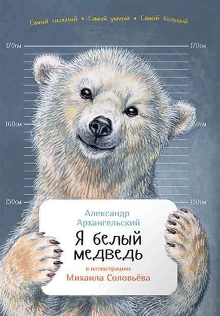 Я белый медведь. А. Архангельский