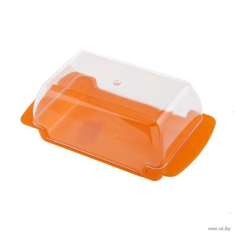 Масленка пластмассовая (170x90x63 мм) — фото, картинка