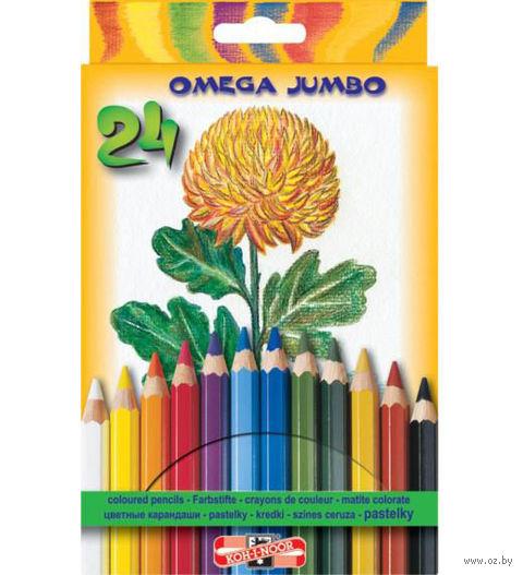 Цветные карандаши (24 цвета, толстые)