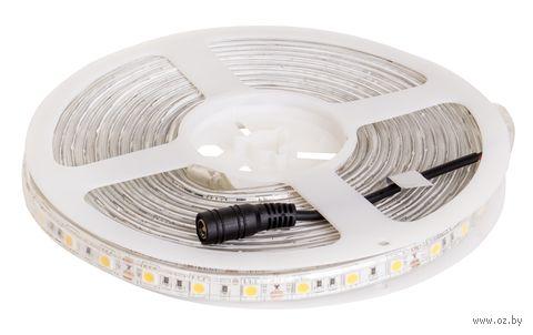Светодиодная лента теплая V-TAC VT-5050 9.6 ВТ, 5 метров, 3000К, 12V, IP65 — фото, картинка