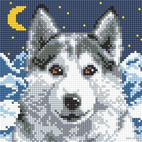 "Алмазная вышивка-мозаика ""Волк"" (200х200 мм) — фото, картинка"
