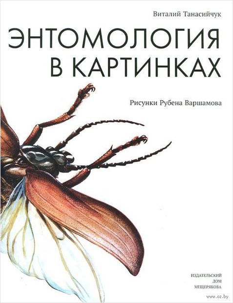 Энтомология в картинках. Виталий Танасийчук