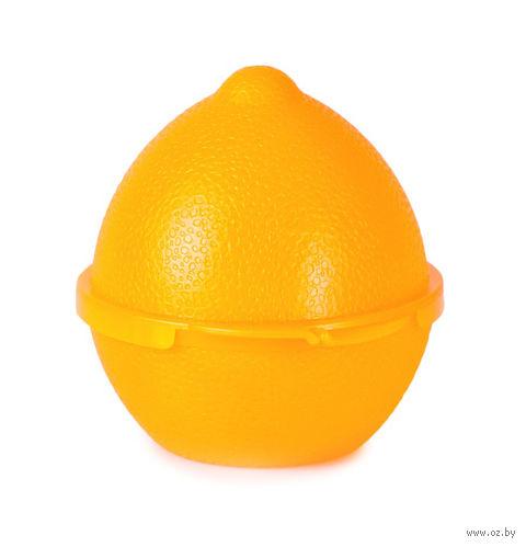 Емкость для лимона (лимон) — фото, картинка