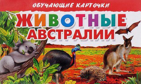Животные Австралии (набор из 16 карточек) — фото, картинка