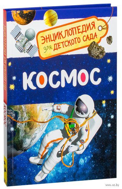Космос. Энциклопедия для детского сада — фото, картинка