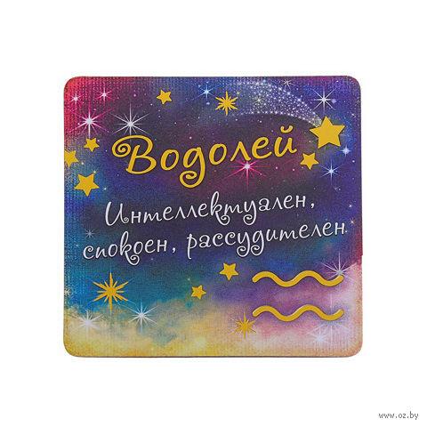 """Магнит пластмассовый """"Водолей"""" (8,5х8,5 см)"""