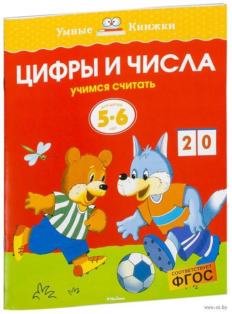 Цифры и числа. Учимся считать. Для детей 5-6 лет. Ольга Земцова