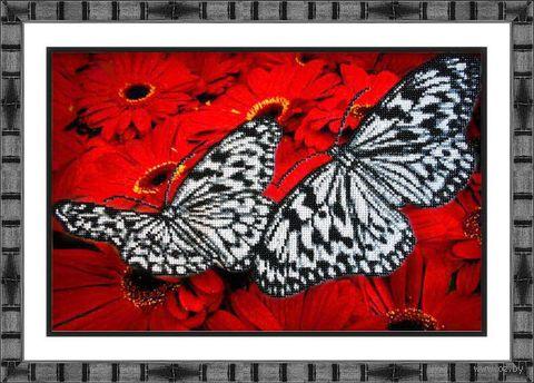 "Вышивка бисером ""Бабочки на красном"" (360х250 мм) — фото, картинка"