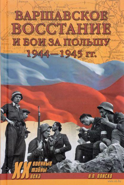 Варшавское восстание и бои за Польшу 1944-1945 гг. — фото, картинка